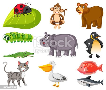 Large set of different types of animals on white background illustration