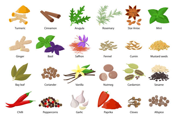 Large set of spices vector illustrations in flat design isolated on white background. Spices and herbs icons collection. Large set of spices vector illustrations in flat design isolated on white background. Spices and herbs, seasoning icons collection allspice stock illustrations
