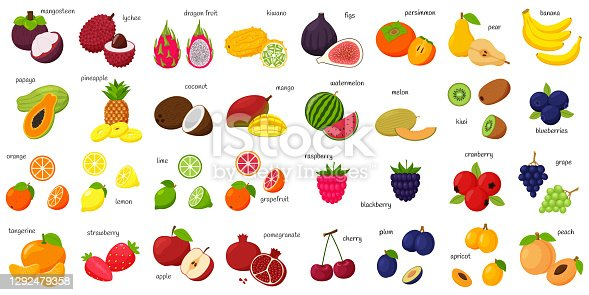 A large set of tropical, exotic, citrus fruits with names. Fruit and berry icons. Whole fruit, half cut and slices. Huge collection.Flat . Color vector illustration. Design elements isolated on white
