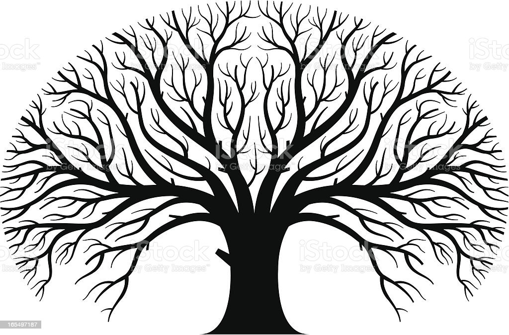 large tree stock vector art more images of black and white rh istockphoto com tree vector free download tree vector art