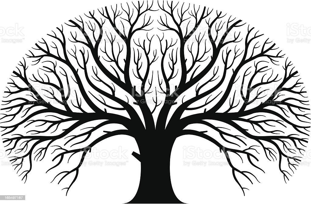 Large tree vector art illustration