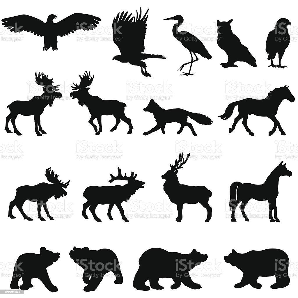 広々とした森林動物シルエットセット のイラスト素材 165684041 | istock
