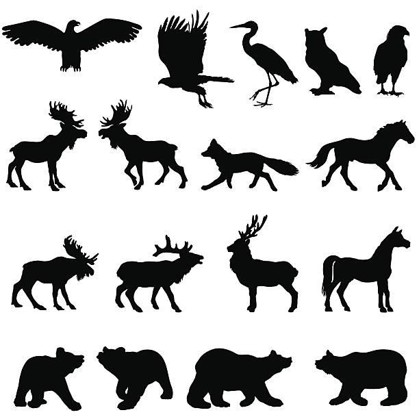 Large woodland animal silhouette set vector art illustration