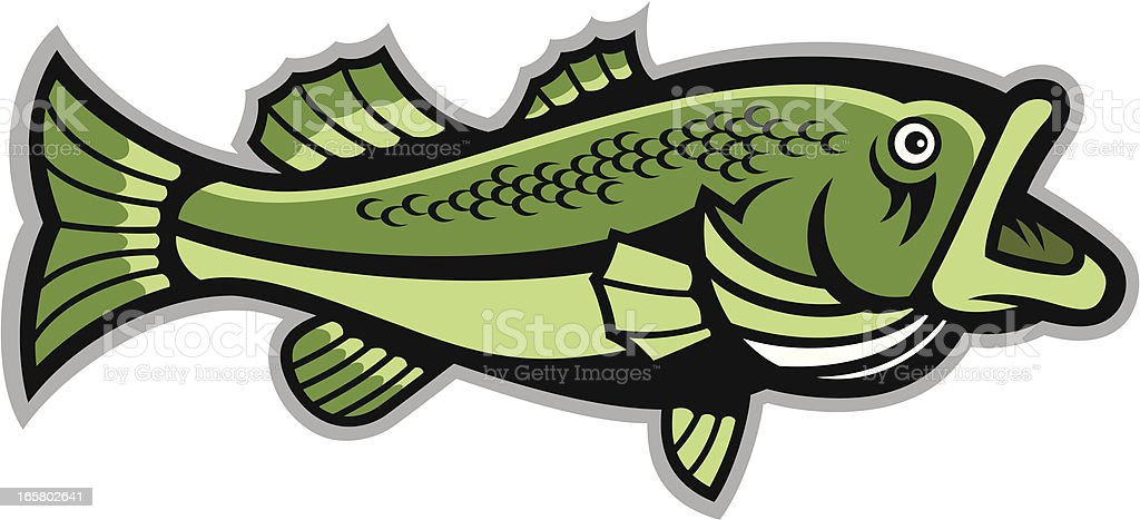 Largemouth Bass royalty-free stock vector art