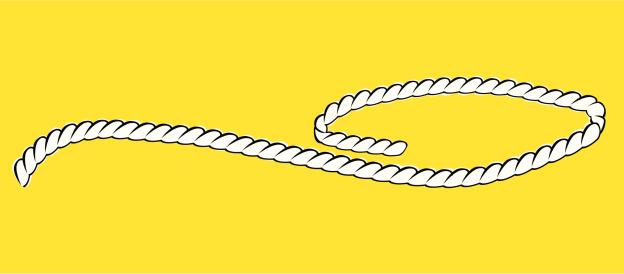 Lasso Rope - Vector