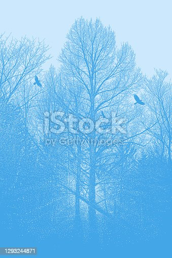 istock Late autumn trees and raven 1293244871