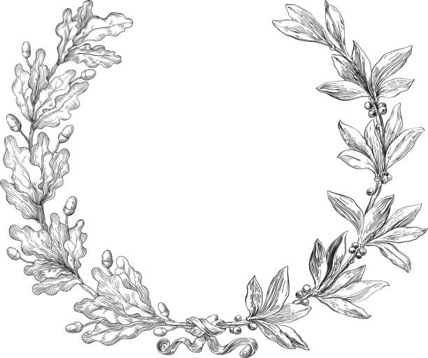 Laurel and oak wreath Vector Decorative element with laurel and oak branches at engraving style. oak leaf stock illustrations