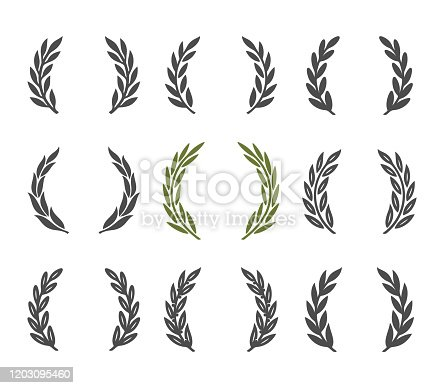 laurel wreath design element. Isolated on white background.