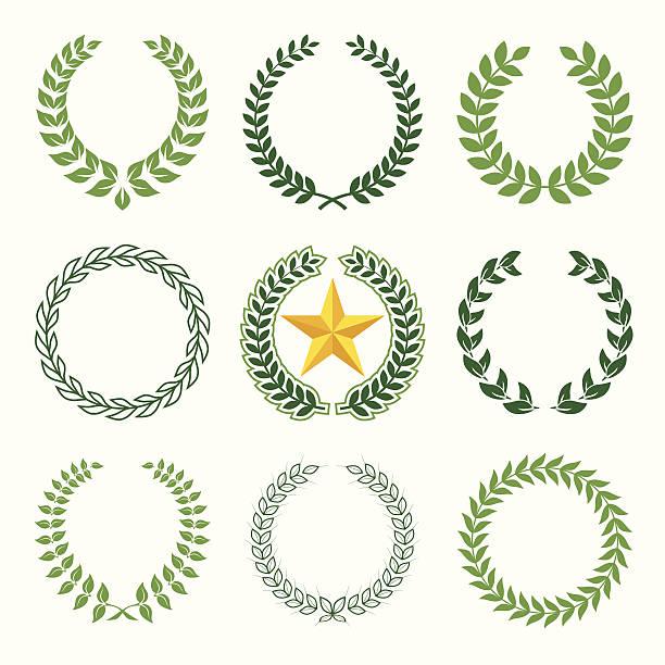 laurel wreaths set of 9 laurel wreaths olive branch stock illustrations