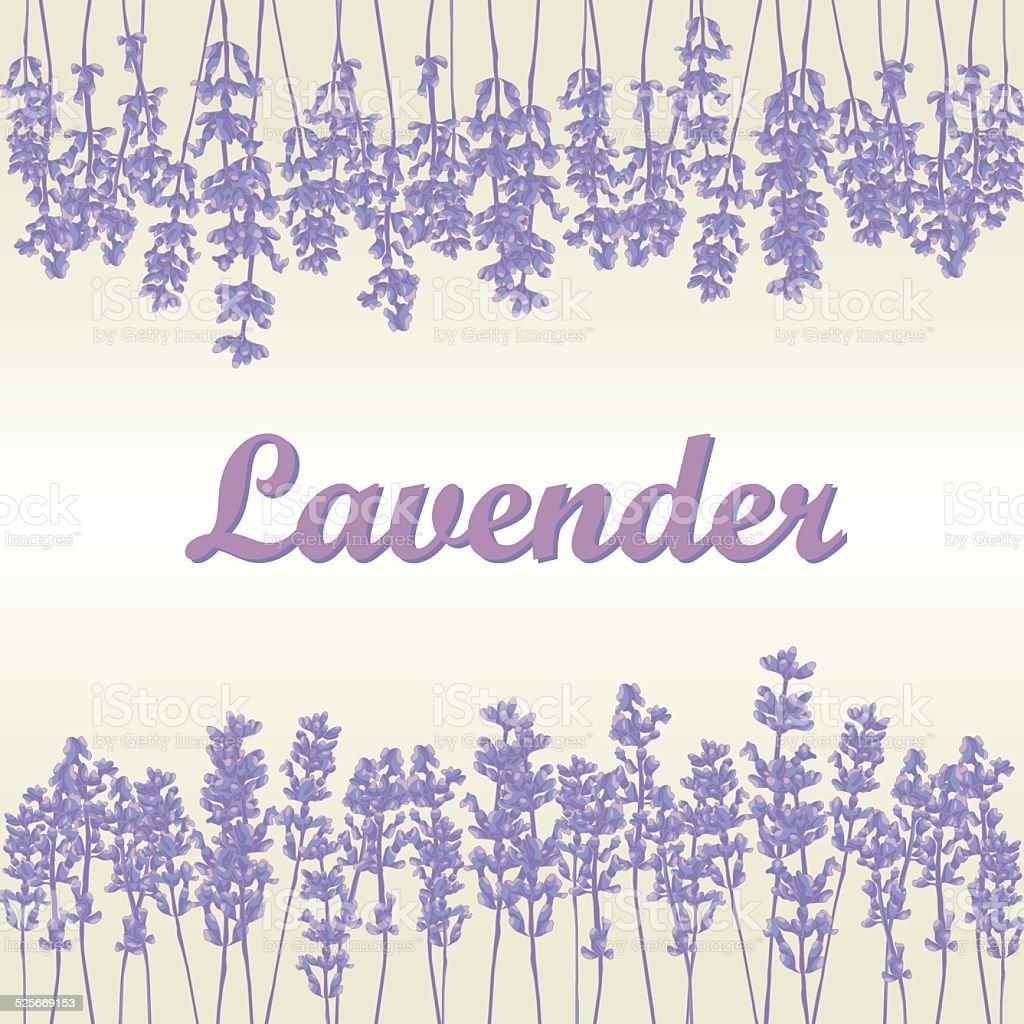 Lavender background vector art illustration
