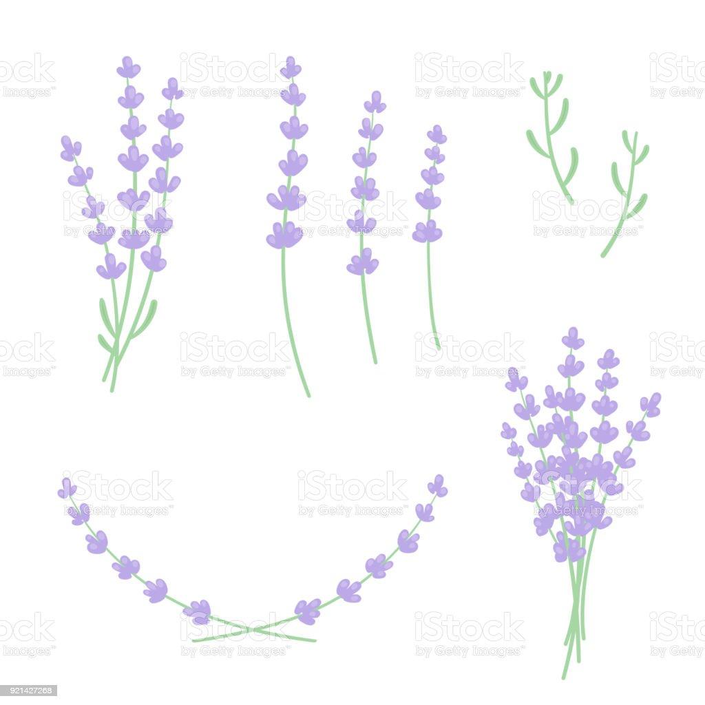lavender design set stock vector art more images of aromatherapy rh istockphoto com