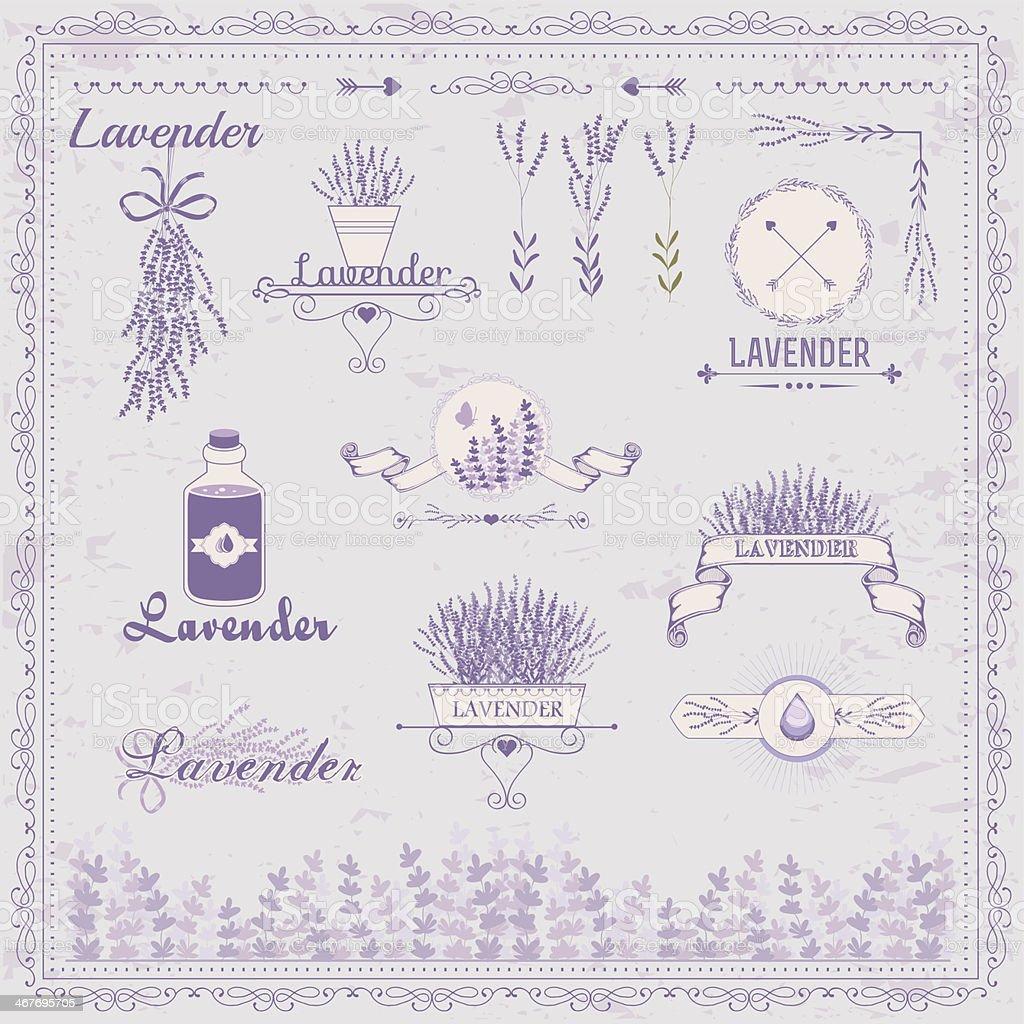 Lavender, herb, flower, floral vintage, packaging  background vector art illustration