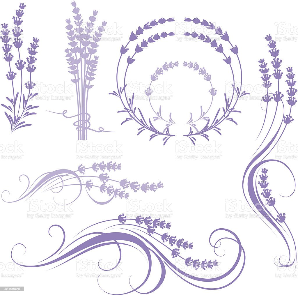 lavender royalty-free stock vector art