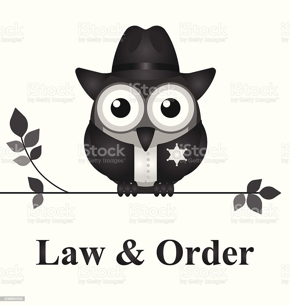 Law and Order USA vector art illustration