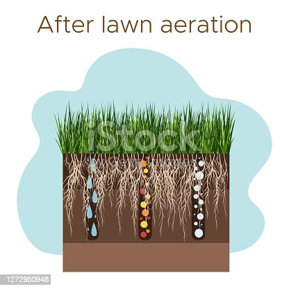 Lawn care - aeration and scarification. Labels by stage-after. Intake of substances-water, oxygen, and nutrients to feed the grass and soil. Vector flat illustration isolated