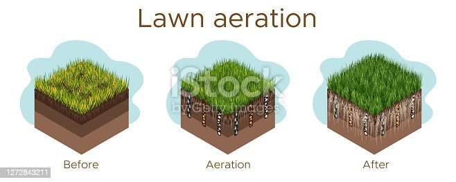 Lawn care - aeration and scarification. Labels by stage-before, during, and after. Intake of substances-water, oxygen, and nutrients to feed the grass and soil. Vector isometric illustration isolated.