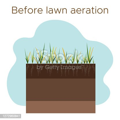 Lawn care - aeration and scarification. Labels by stage-before. Intake of substances-water, oxygen, and nutrients to feed the grass and soil. Vector flat illustration isolated