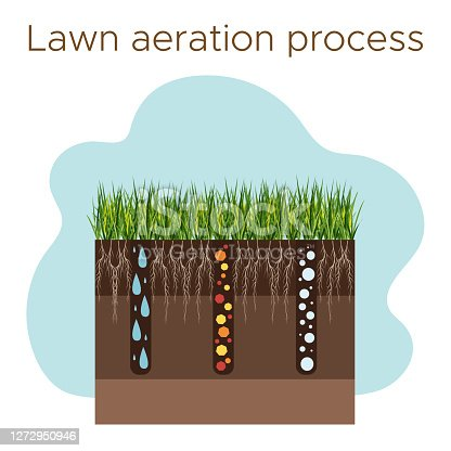 Lawn care - aeration and scarification. Labels by stage-during. Intake of substances-water, oxygen, and nutrients to feed the grass and soil. Vector flat illustration isolated