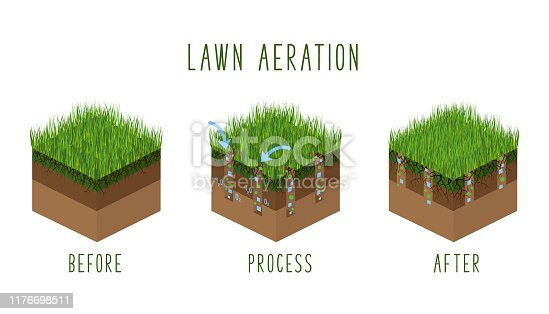 Lawn aeration process steps, isometric - before and after, lawn grass care service, gardening and landscaping, isolated illustration for article, infographics or instruction on white background, vector isometry