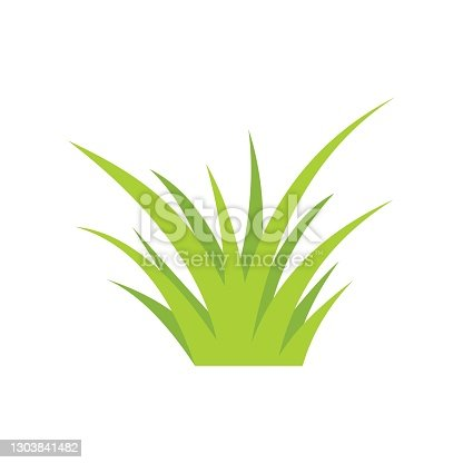 istock lawn grass icon, , vector illustration on white background 1303841482
