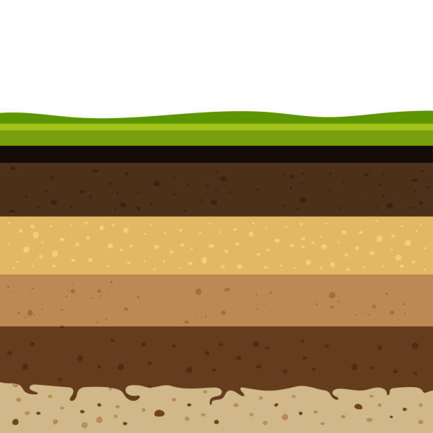 layers of soil Layers of grass with Underground layers of earth, seamless ground, cut of soil profile with a grass, layers of the earth, clay and stones, ground water rock formations stock illustrations