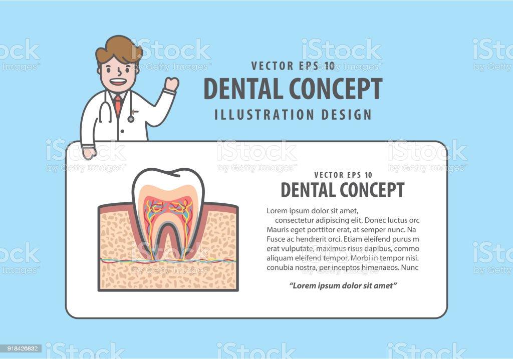 Ilustración de Diente De Sección Transversal De Diseño Con Estilo De ...