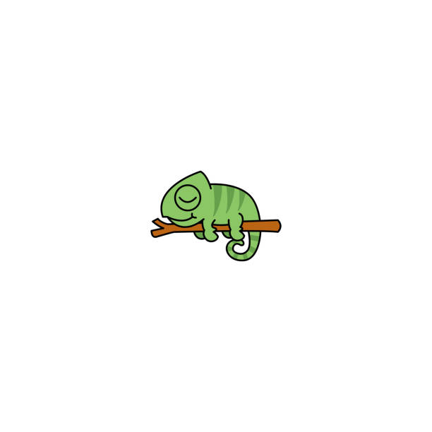 Lazy chameleon sleeping on a branch cartoon, vector illustration Lazy chameleon sleeping on a branch cartoon, vector illustration chameleon stock illustrations