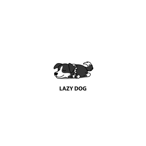 fauler hund, süße border collie welpen schlafen symbol, vektor-illustration - collie stock-grafiken, -clipart, -cartoons und -symbole