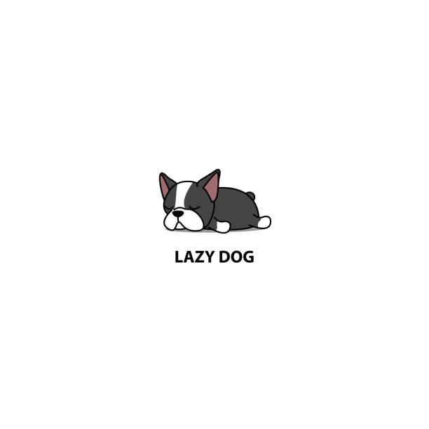Lazy dog, cute boston terrier puppy sleeping icon, vector illustration vector art illustration