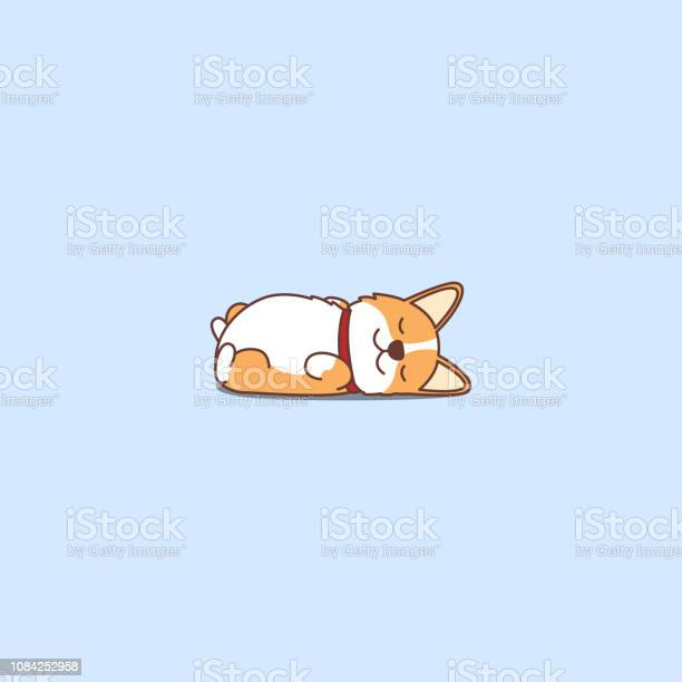 Lazy dog sleeping cute welsh corgi puppy lying on back cartoon icon vector id1084252958?b=1&k=6&m=1084252958&s=612x612&h=tfbf1dtv1de t0eqysmo dhfy6xaui93tv4ichhpzeo=