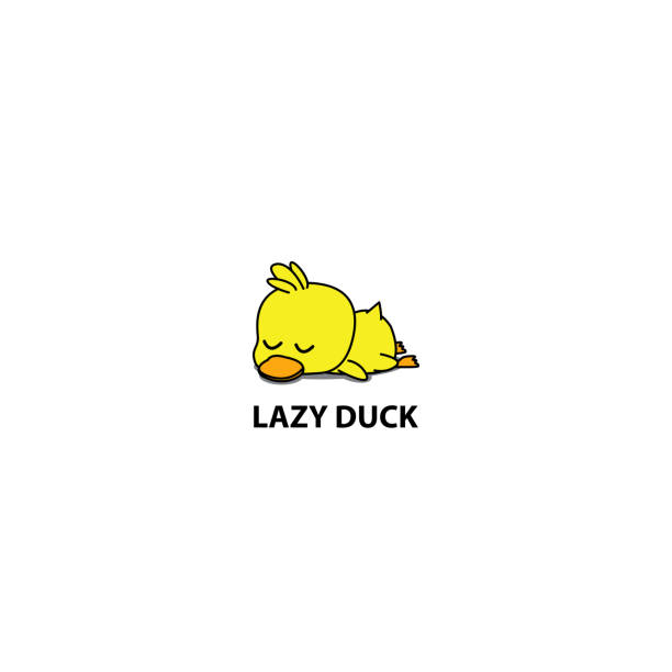 Lazy duck, cute duckling sleeping icon, symbol design, vector illustration Lazy duck, cute duckling sleeping icon, symbol design, vector illustration duckling stock illustrations