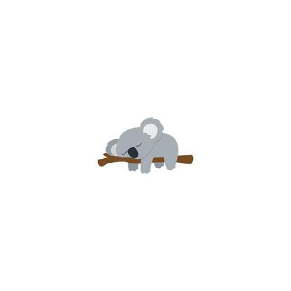 Lazy koala sleeping on a branch flat design, vector illustration