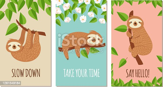 Lazy sloth. Cute slumbering sloths on branch. Child t shirt design or greeting cards vector set