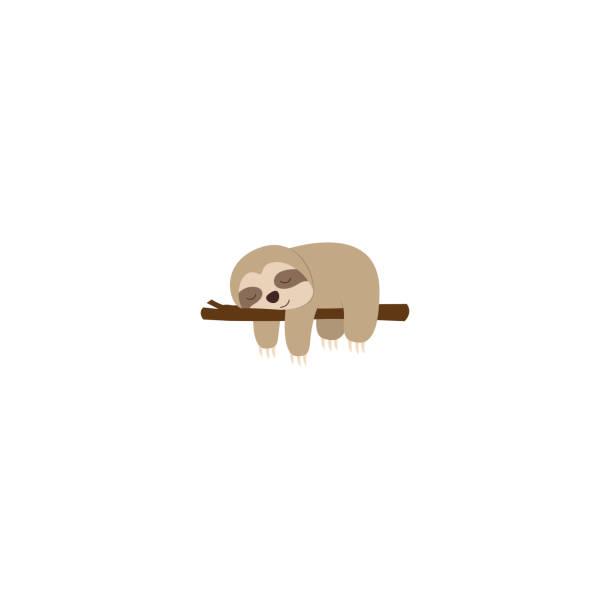 stockillustraties, clipart, cartoons en iconen met lui luiaard slapen op een tak, vectorillustratie - lazy