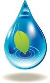 vector illustration of leaf in a water drop