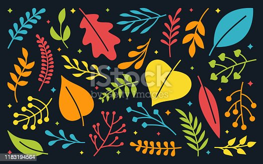 Leaf and Plant Decoration Elements