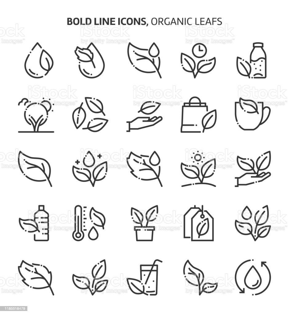 Лист и растения, связанные, смелые иконки линии. - Векторная графика Editable Stroke роялти-фри