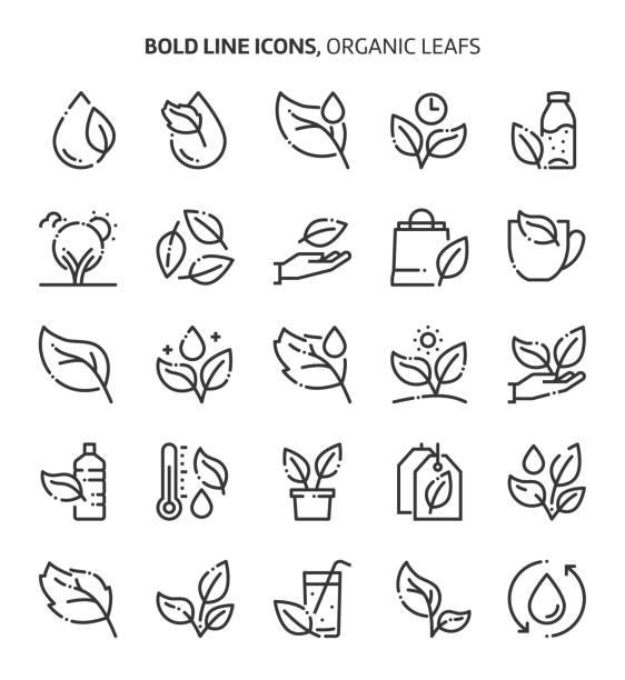 лист и растения, связанные, смелые иконки линии. - holiday background stock illustrations