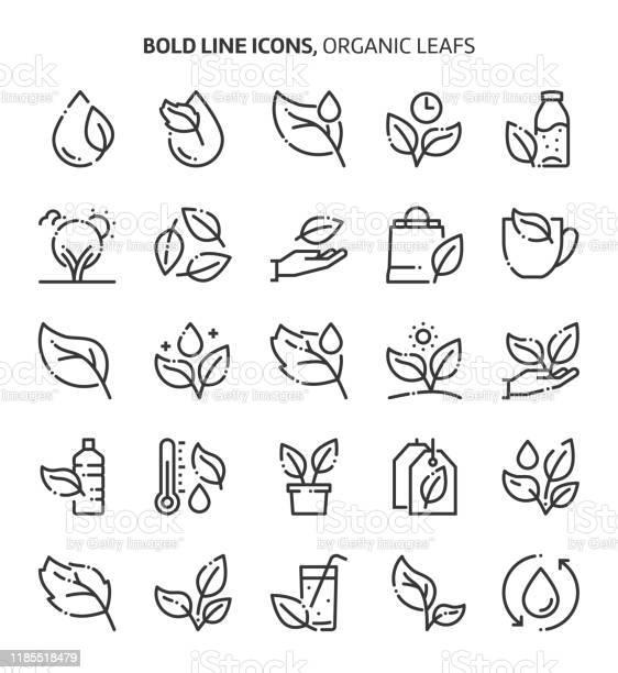Лист И Растения Связанные Смелые Иконки Линии — стоковая векторная графика и другие изображения на тему Editable Stroke
