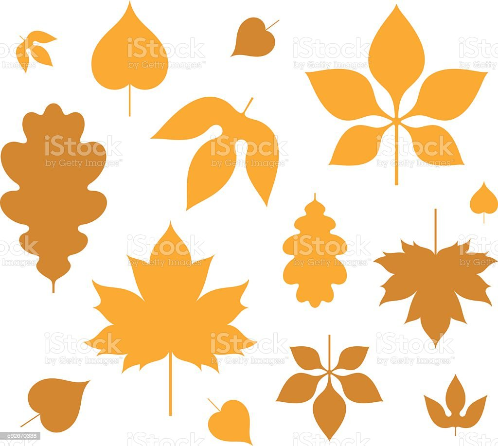 Leaf. Autumn vector art illustration