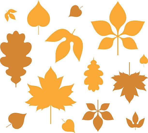 Leaf. Autumn Vector illustration (EPS) autumn silhouettes stock illustrations