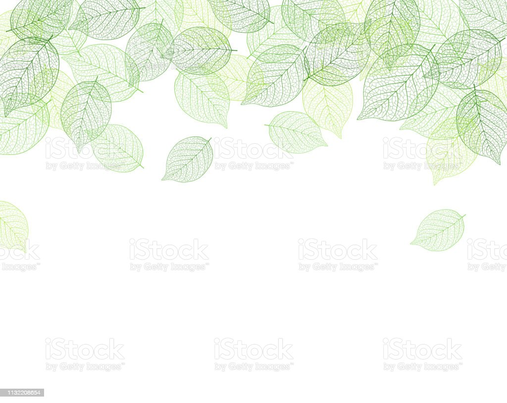 Leaf background material - Векторная графика Ботаника роялти-фри