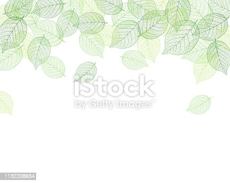 Leaf background material