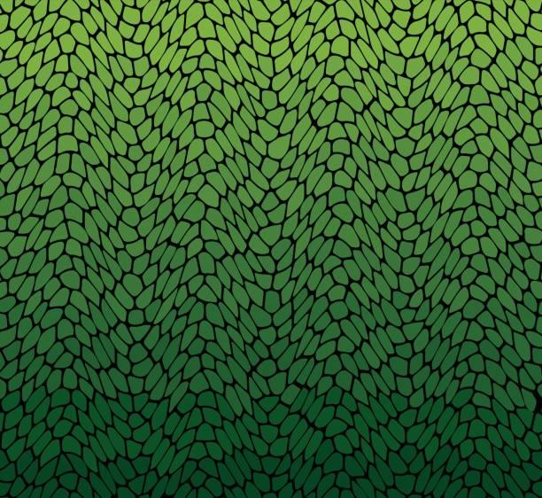 葉背景 - 葉狀花紋 幅插畫檔、美工圖案、卡通及圖標