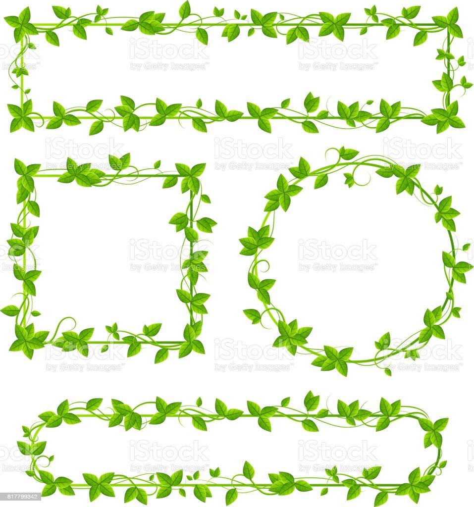 Leaf border design on white background