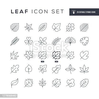 Leaf Editable Stroke Line Icons