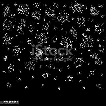 Leaf fall. Autumn leaves are drawn with chalk on a black board. Border from sketches drawn in style. Seamless pattern for textiles, wallpapers, gift wrapping and scrapbook. Vector illustration