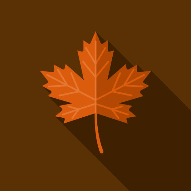 Leaf Flat Design Autumn Icon with Side Shadow A colored flat design autumn themed icon with a long side shadow. Color swatches are global so it's easy to edit and change the colors. autumn leaf color stock illustrations