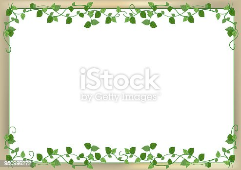 Vector frame material