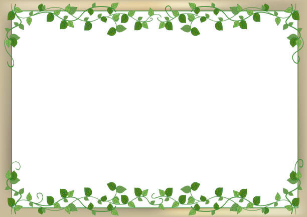 leaf frame with back wall image - vine stock illustrations, clip art, cartoons, & icons